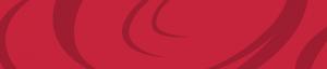 Coba.edu title bar - red