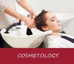 cosmetology course