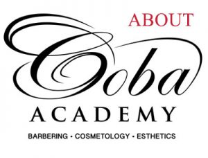 coba-academy-about